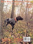 German Shorthair Pointer jpg